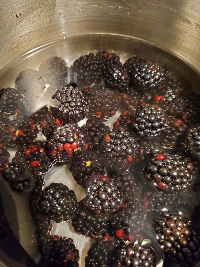 Fresh Homemade Blackberry Juice