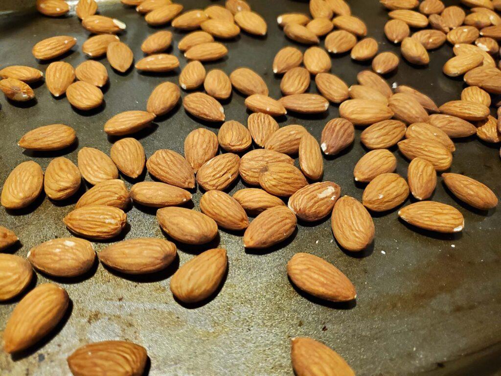Vegan Almond Chocolate Bark